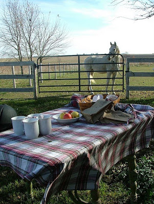 Plaid fabric used as a tablecloth, vintage thermos filled with hot cocoa and an old basket for serving the pies - A Horse Party
