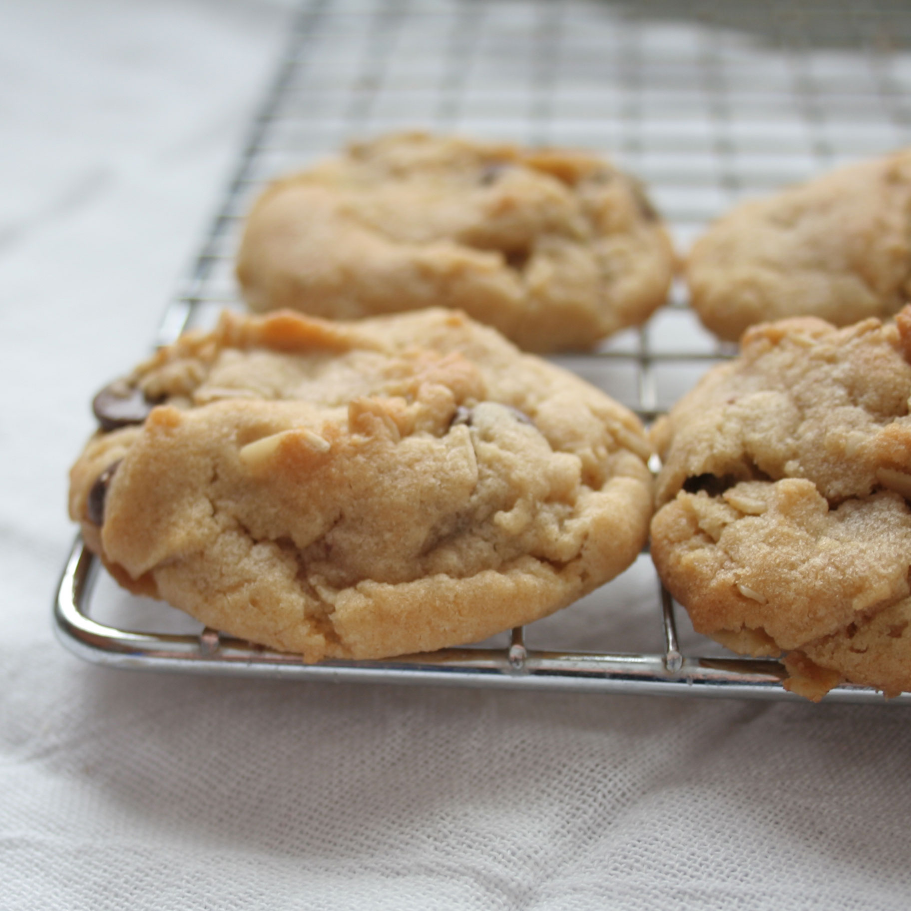 My Downfall – Chocolate Chip Cookies