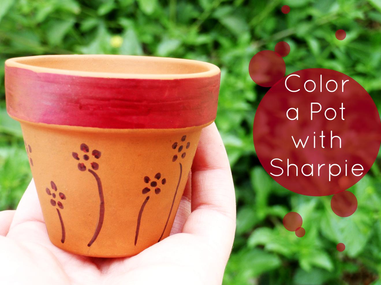 Sharpie-Colored Pot