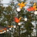 Craft fall leaf decorations