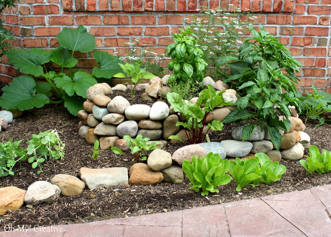 how to create a small vegetable garden using a garden spiral ohmy creative - Small Vegetable Garden Ideas Pictures