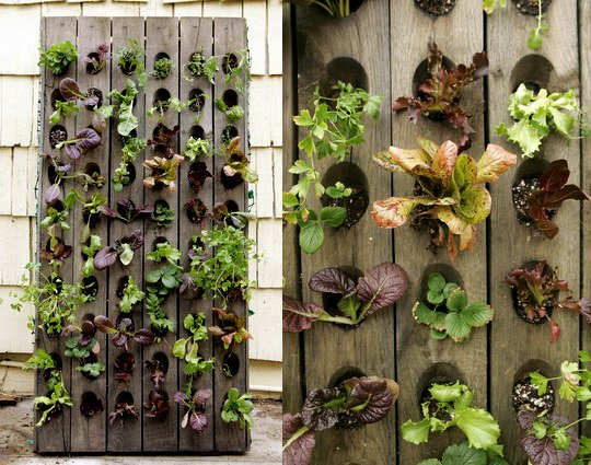 Vegetable Garden Ideas Small Spaces 1o small space garden ideas - oh my creative