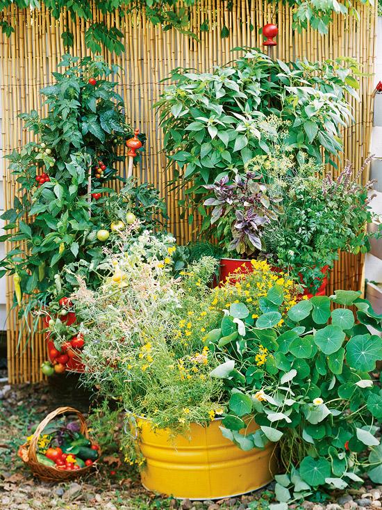 1o small space garden ideas oh my creative for Creative garden ideas small spaces