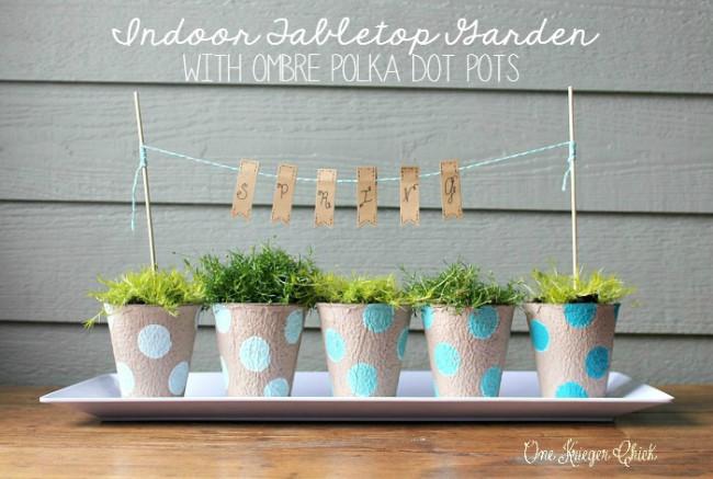 Indoor-Garden-with-ombre-polka-dot-painted-pots