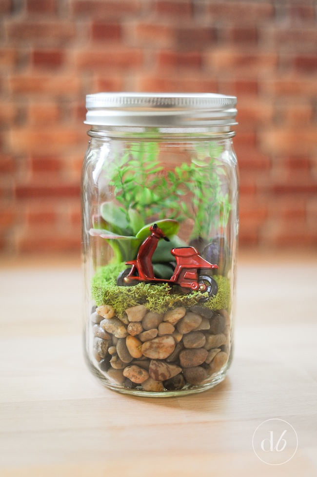 Easy Mason Jar Terrariums Oh My Creative