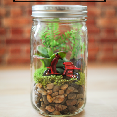 Easy Mason Jar Terrariums