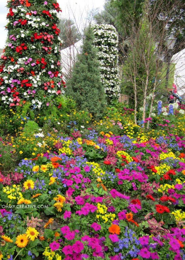 Bright Flower combinations Epcot International Flower and Garden Festival  |  OHMY-CREATIVE.COM