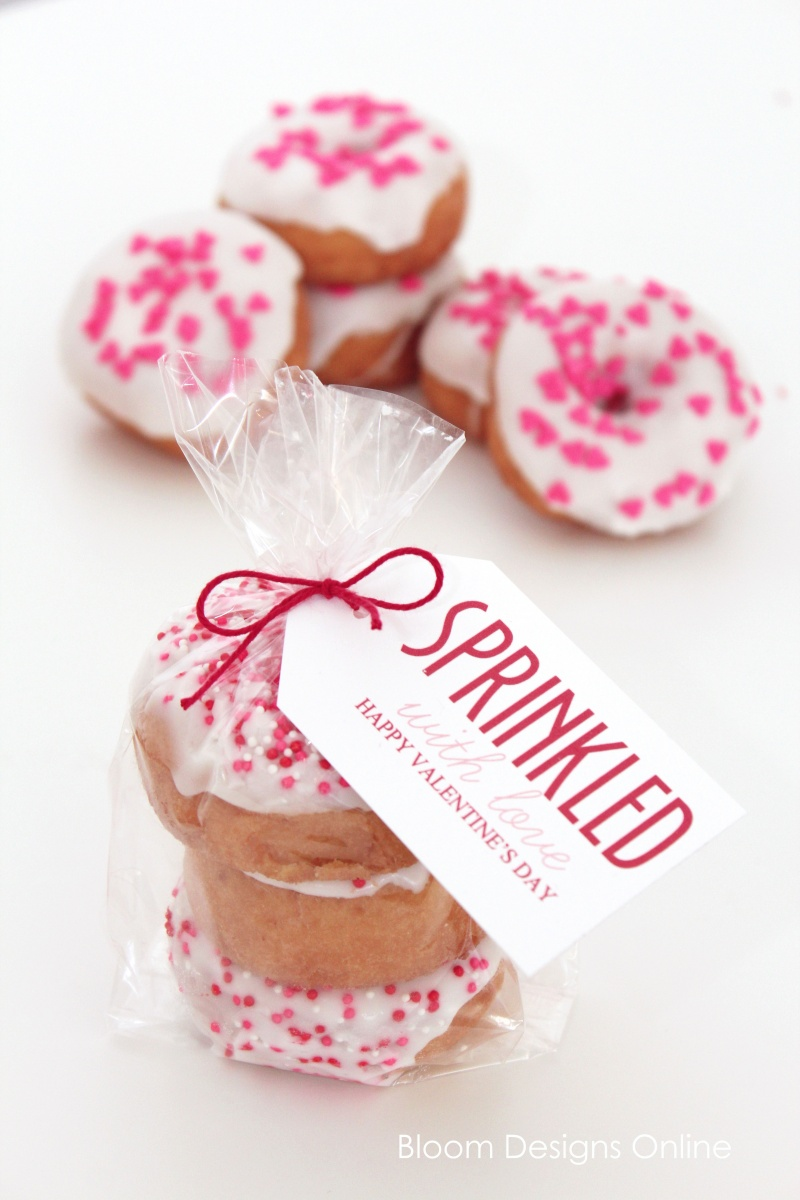 Sprinkled With Love Valentine's Day Printable and gift
