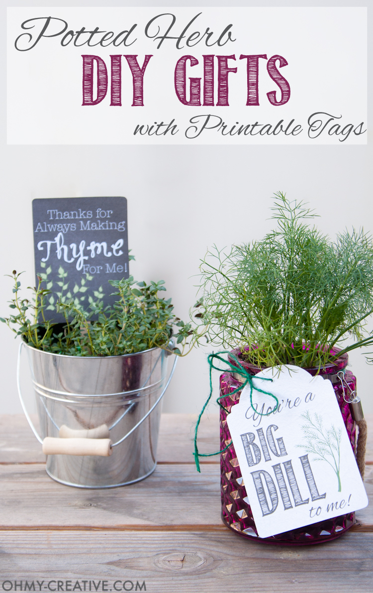 Potted Herb Diy Gifts With Printable Tags Oh My Creative