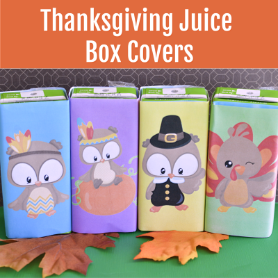 Thanksgiving Juice Box Covers