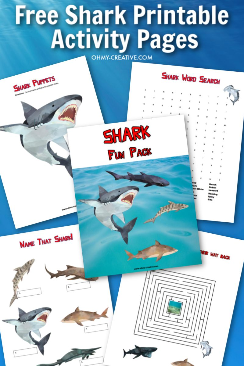A sample of free shark printable activity pages for kids